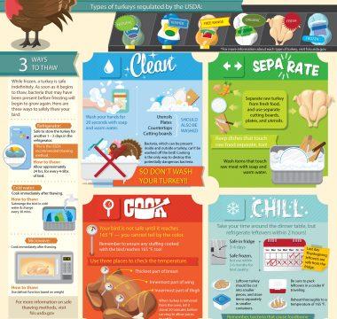 thanksgiving-safe-handling